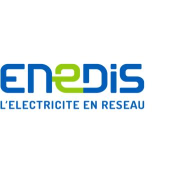 Logo de l'entreprise ENEDIS